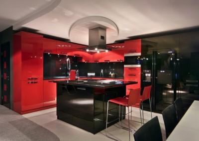 Проект Червено (4)